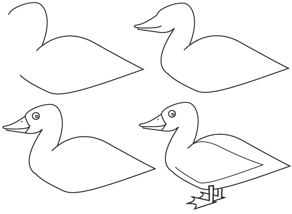Dessin canard - Comment dessiner des animaux ...