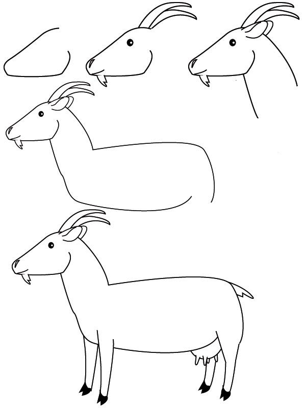 Dessin chèvre
