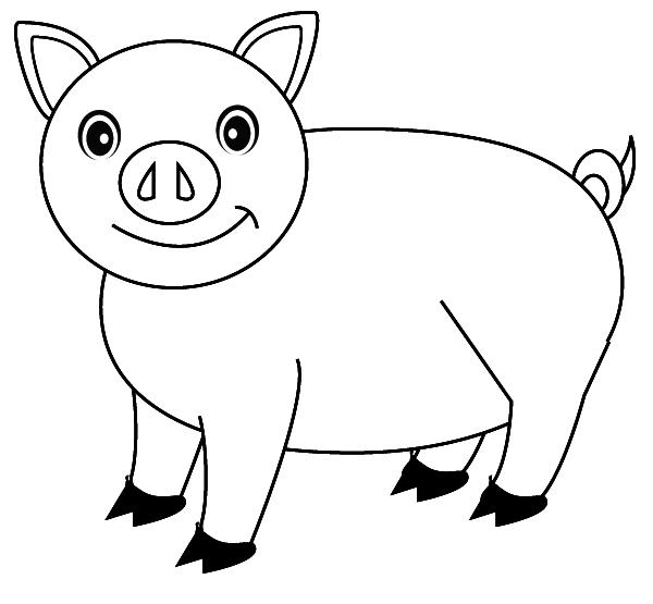 Coloriage cochon - Dessin cochon ...