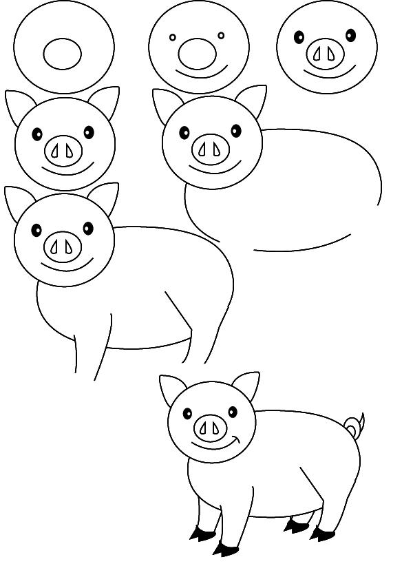 Dessin cochon - Cochon a dessiner ...