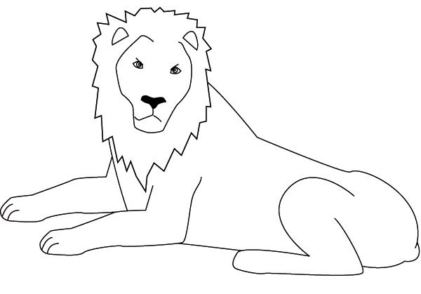 dessin de gros lion
