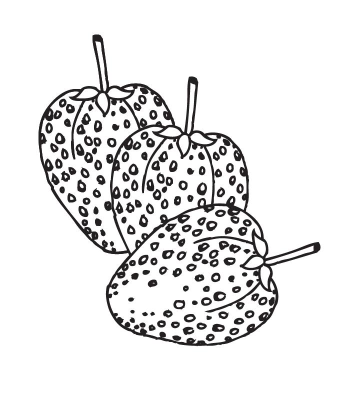 coloriage fraise