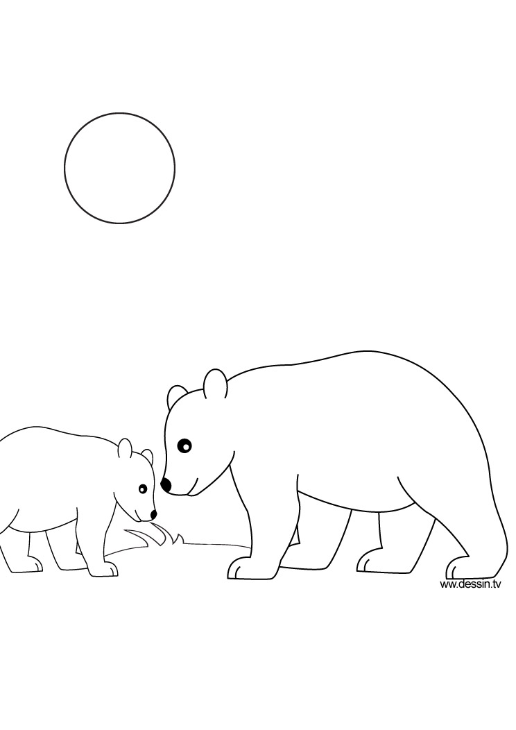 coloriage ours