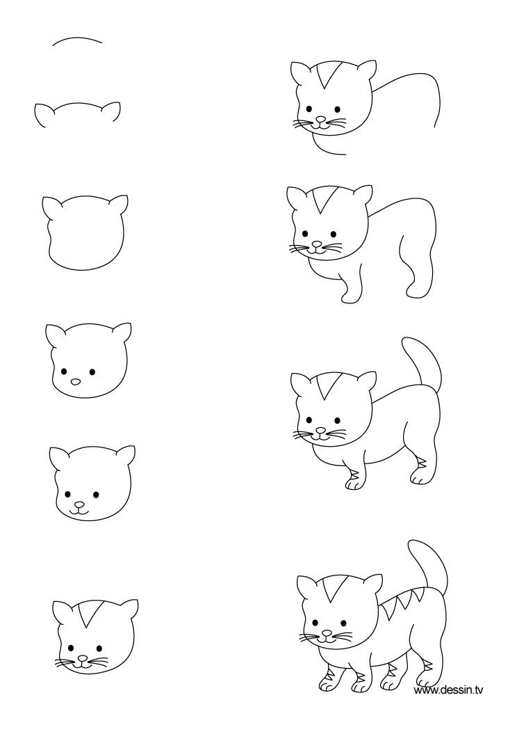 dessin chaton