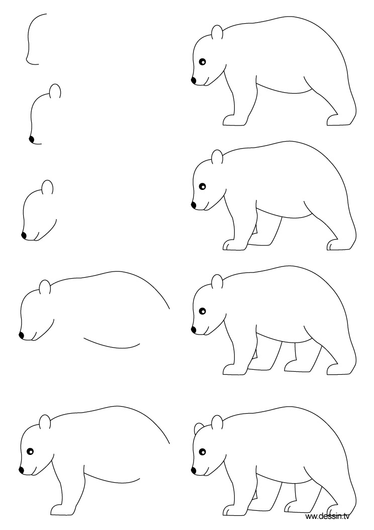 how to draw a simple bear face