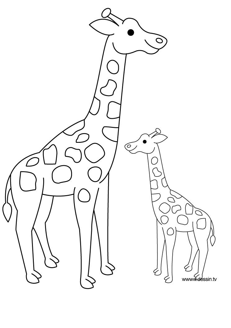 Souvent Coloriage girafe OR49