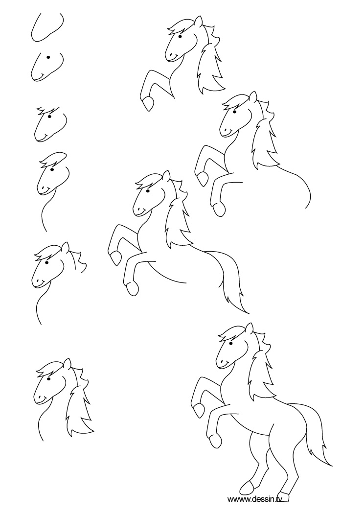 comment dessiner un poney