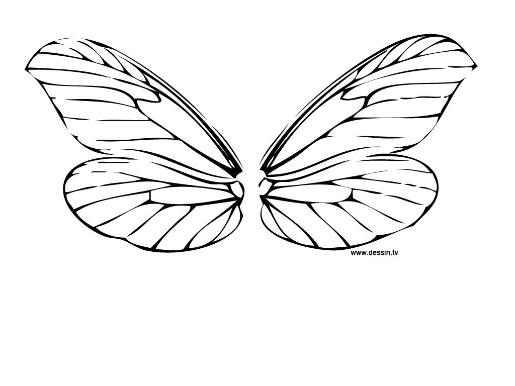 coloriage ailes-de-libellule