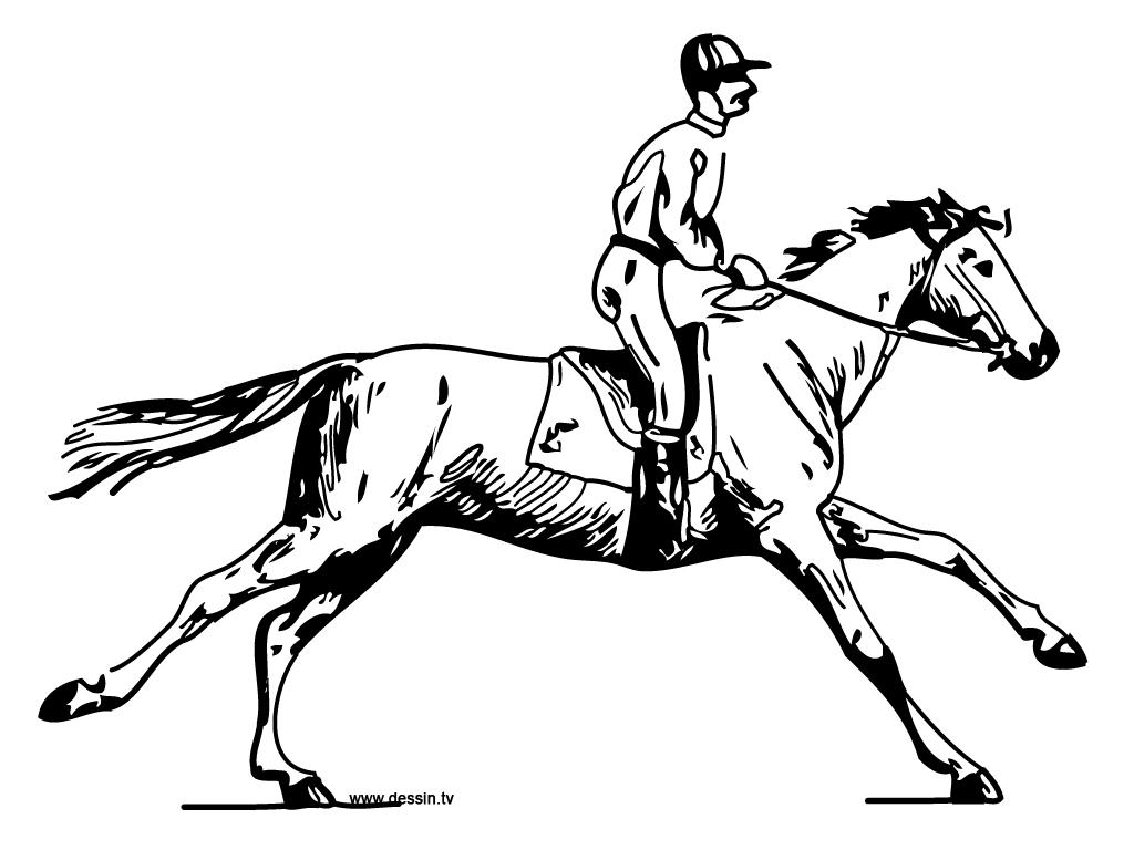 coloriage cheval-avec-cavalier