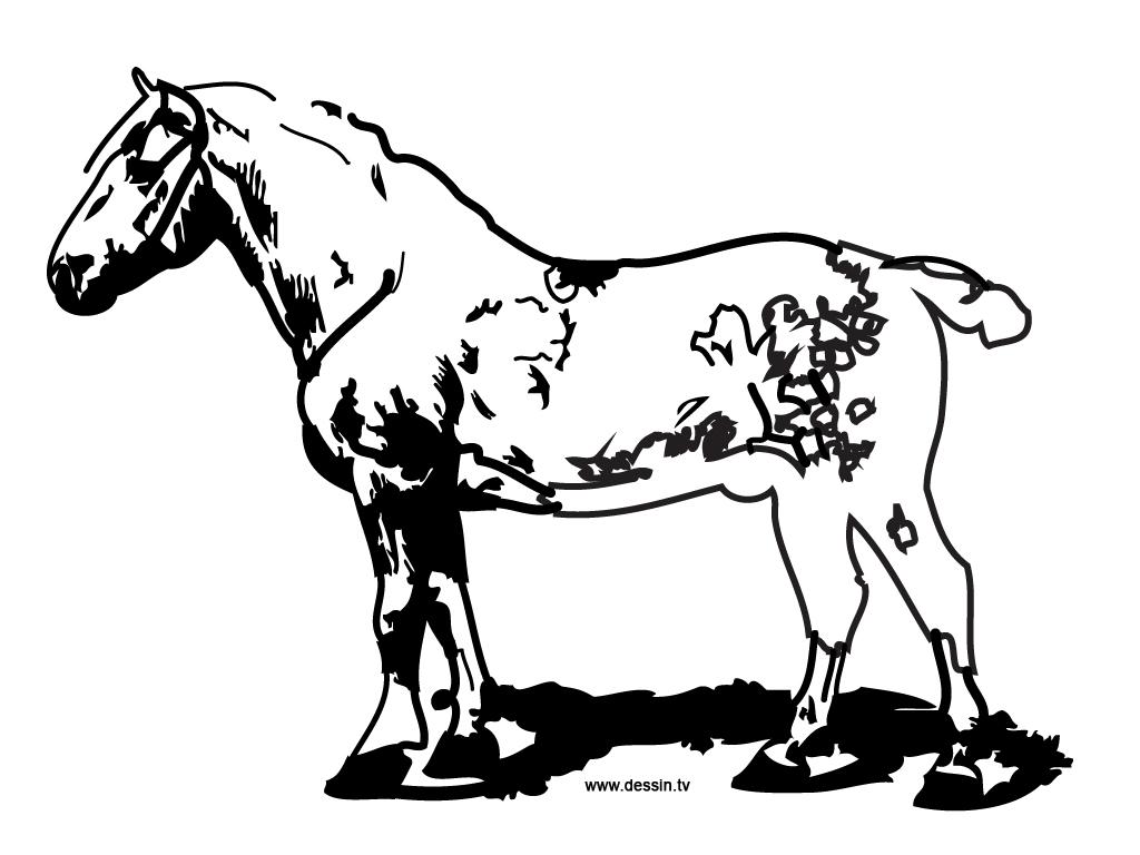 Coloriage cheval de ferme - Coloriages cheval ...