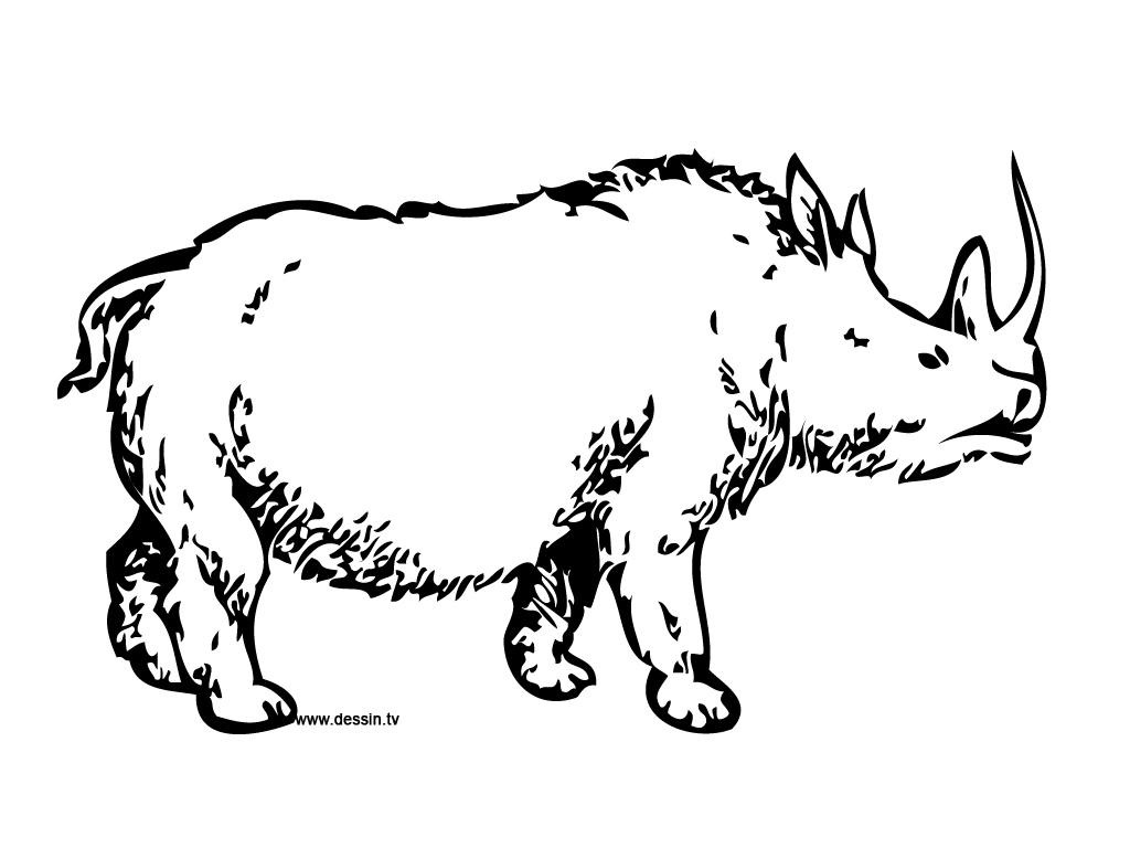 Coloriage rhinoc ros pr historique - Rhinoceros dessin ...
