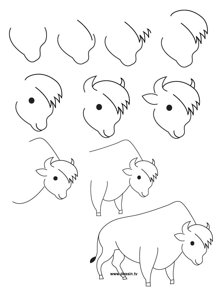 dessin bison