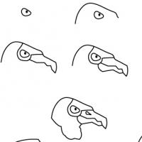Dessin vautour