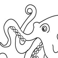 Coloriage pieuvre