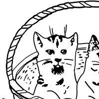 Coloriage chatons dans une corbeille