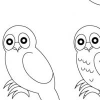 Dessin hibou - Chouette a dessiner ...
