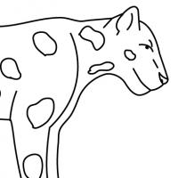 Dessin jaguar - Jaguar dessin ...