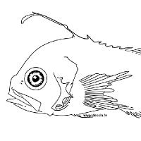 Coloriage poisson bizarre