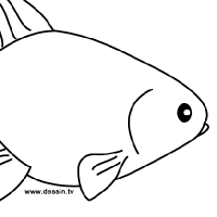 Dessin poisson rouge - Dessin poisson simple ...