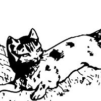 Coloriage petit chat allongé dans l'herbe