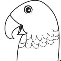 Dessin perroquet - Dessiner un perroquet ...