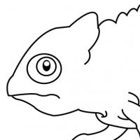 Coloriage caméléon