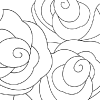 Coloriage rose