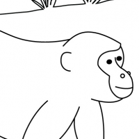 Coloriage singe