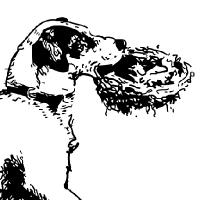 Coloriage chien qui porte un nid