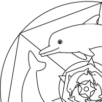 Mandala dauphins