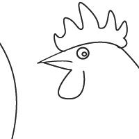 Dessin coq