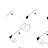 Dessin kangourou